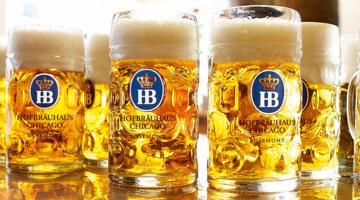 beermugs.png